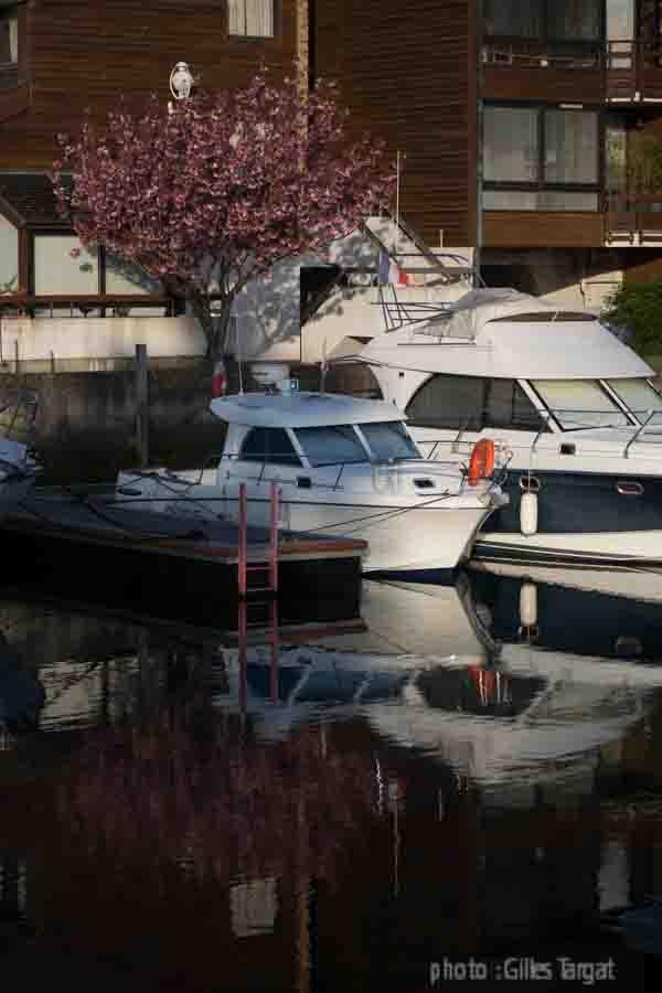 france, region normandie, calvados, pays d'auge, cote flleurie, deauville, marina, port deauville, voiliers, plaisance, bateaux,