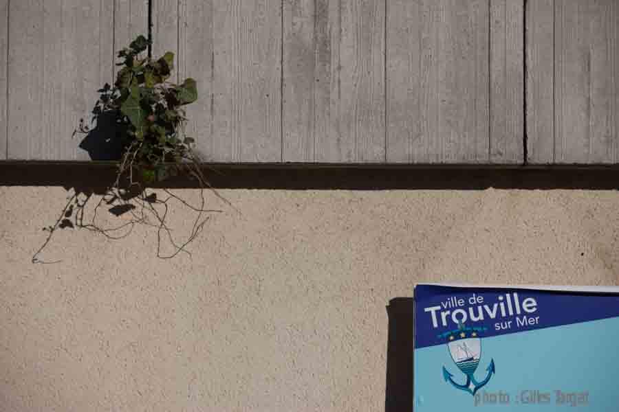 france, region basse normandie, calvados, cote fleurie, trouville sur mer,